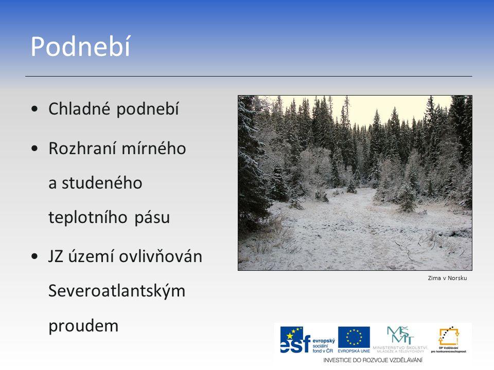 Podnebí Chladné podnebí Rozhraní mírného a studeného teplotního pásu JZ území ovlivňován Severoatlantským proudem Zima v Norsku