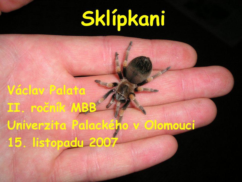 Sklípkan, tarantule, černá vdova a ti druzí  Johan Christian Fabricius (1745 – 1808): V roce 1793 poprvé použil latinský název Tarantula.
