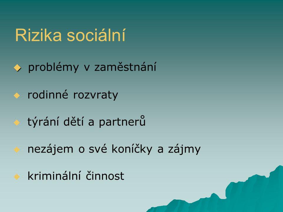 Rizika sociální   problémy v zaměstnání   rodinné rozvraty   týrání dětí a partnerů   nezájem o své koníčky a zájmy   kriminální činnost