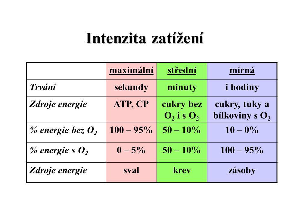 Intenzita zatížení maximálnístřednímírná Trvánísekundyminutyi hodiny Zdroje energieATP, CPcukry bez O 2 i s O 2 cukry, tuky a bílkoviny s O 2 % energi