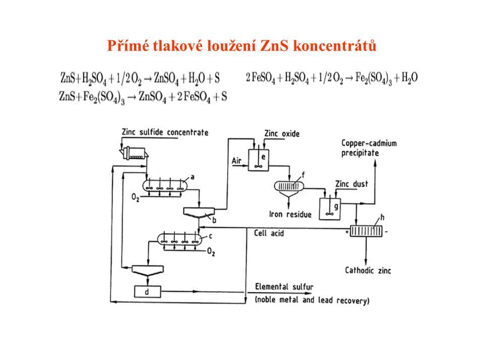 Přímé tlakové loužení ZnS koncentrátů