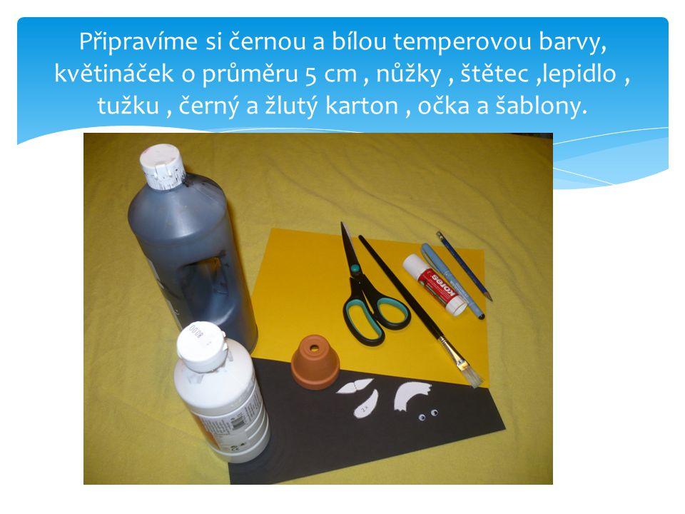 Připravíme si černou a bílou temperovou barvy, květináček o průměru 5 cm, nůžky, štětec,lepidlo, tužku, černý a žlutý karton, očka a šablony.