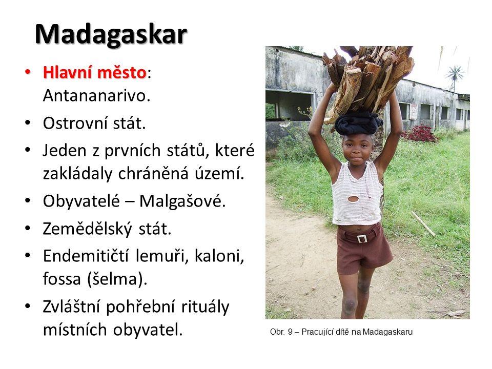 Madagaskar Hlavní město Hlavní město: Antananarivo. Ostrovní stát. Jeden z prvních států, které zakládaly chráněná území. Obyvatelé – Malgašové. Zeměd
