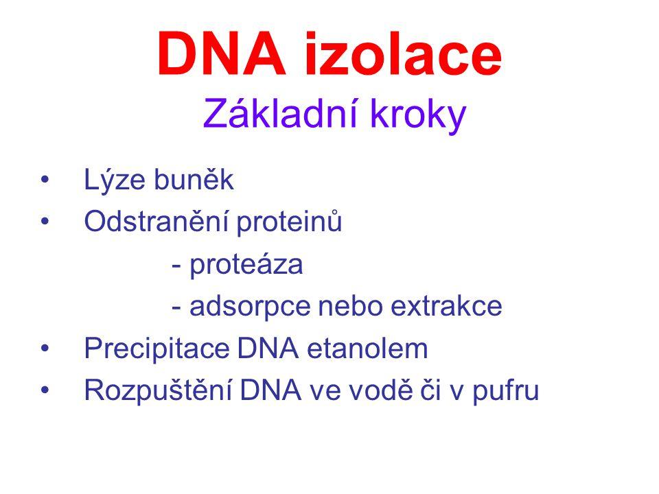 DNA izolace Tři základní metody 1.Extrakce fenol-chloroform (rozdílná rozpustnost v roztocích) 2.Vysolovací metoda (precipitace proteinů pomocí NaCl) 3.Adsorpční metoda (silikagelová membrána)
