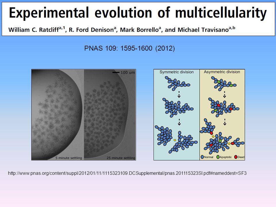 PNAS 109: 1595-1600 (2012) http://www.pnas.org/content/suppl/2012/01/11/1115323109.DCSupplemental/pnas.201115323SI.pdf#nameddest=SF3