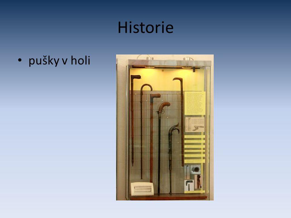 Historie pušky v holi