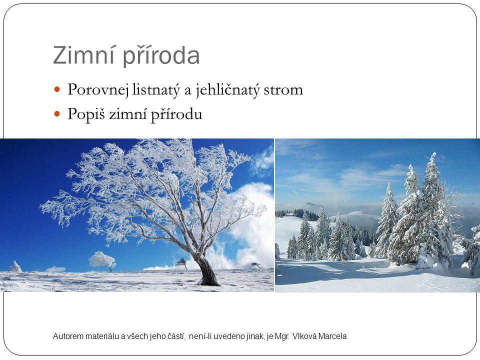 Zimní příroda Porovnej listnatý a jehličnatý strom Popiš zimní přírodu Autorem materiálu a všech jeho částí, není-li uvedeno jinak, je Mgr. Vlková Mar
