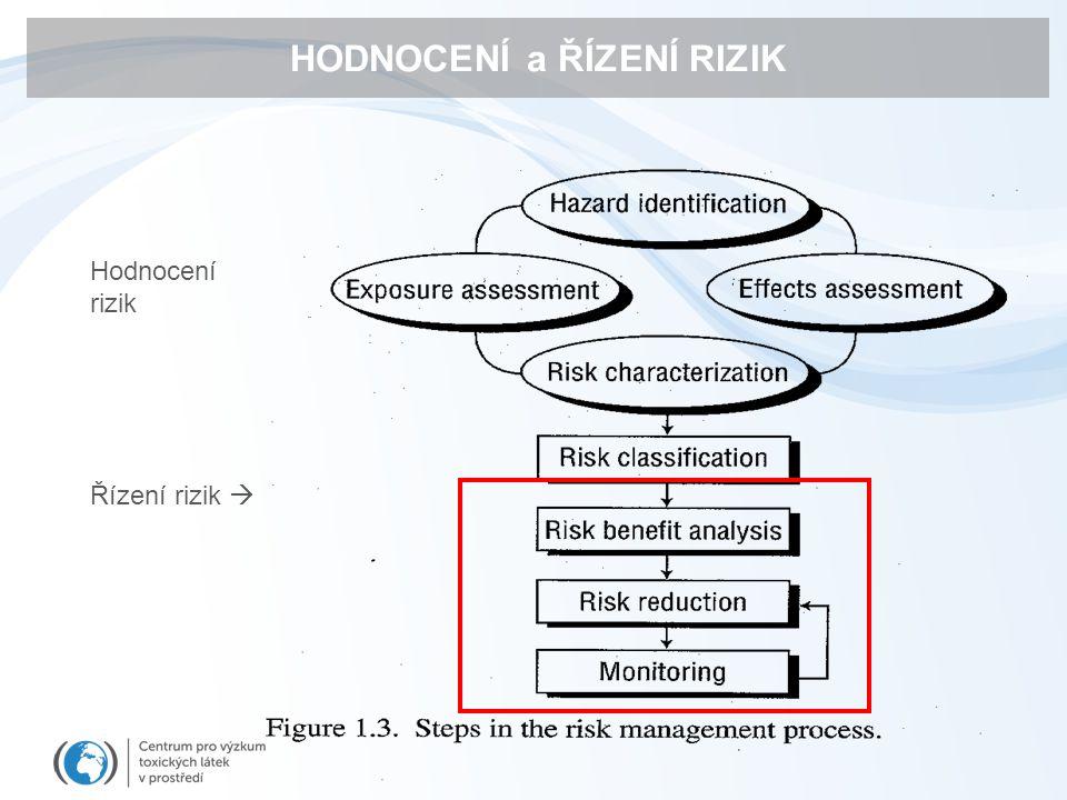 HODNOCENÍ a ŘÍZENÍ RIZIK Hodnocení rizik Řízení rizik 