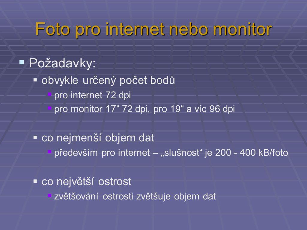 """Foto pro internet nebo monitor  Požadavky:  obvykle určený počet bodů  pro internet 72 dpi  pro monitor 17"""" 72 dpi, pro 19"""" a víc 96 dpi  co nejm"""