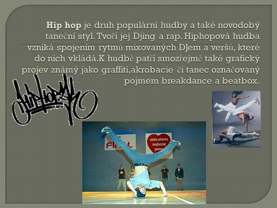 Hiphopová kultura vznikla na po č átku 70.let 20.