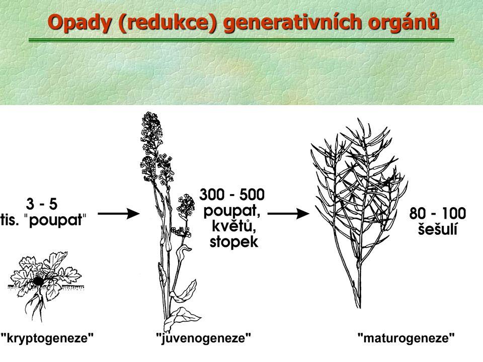Opady (redukce) generativních orgánů