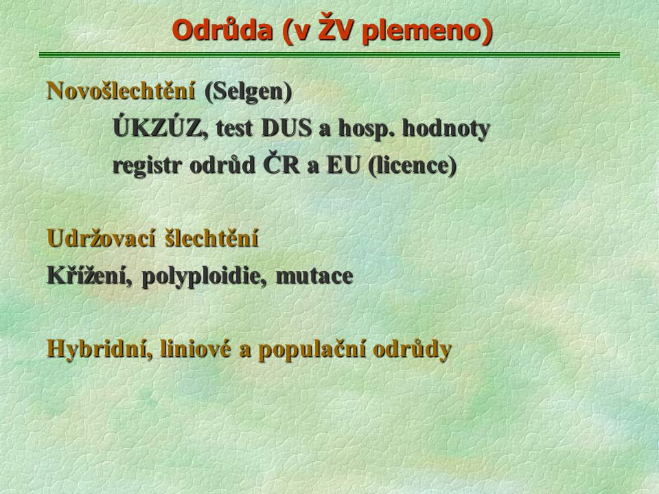 Odrůda (v ŽV plemeno) Novošlechtění (Selgen) ÚKZÚZ, test DUS a hosp.