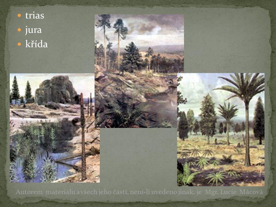 trias jura křída Autorem materiálu a všech jeho částí, není-li uvedeno jinak, je Mgr. Lucie Mácová