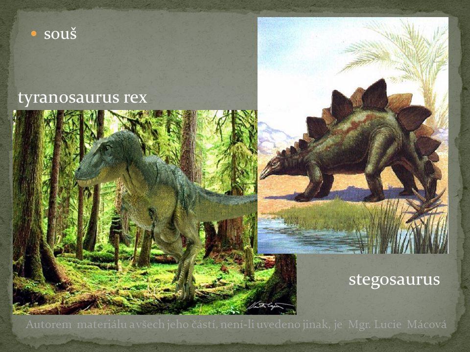 souš Autorem materiálu a všech jeho částí, není-li uvedeno jinak, je Mgr. Lucie Mácová tyranosaurus rex stegosaurus