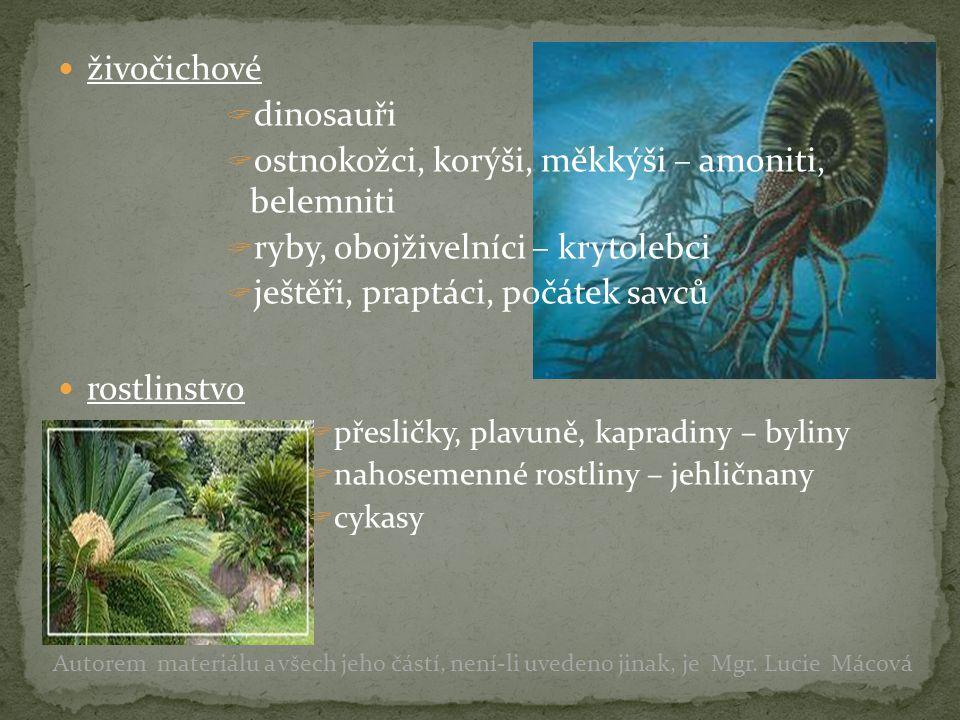živočichové  dinosauři  ostnokožci, korýši, měkkýši – amoniti, belemniti  ryby, obojživelníci – krytolebci  ještěři, praptáci, počátek savců rostlinstvo  přesličky, plavuně, kapradiny – byliny  nahosemenné rostliny – jehličnany  cykasy Autorem materiálu a všech jeho částí, není-li uvedeno jinak, je Mgr.