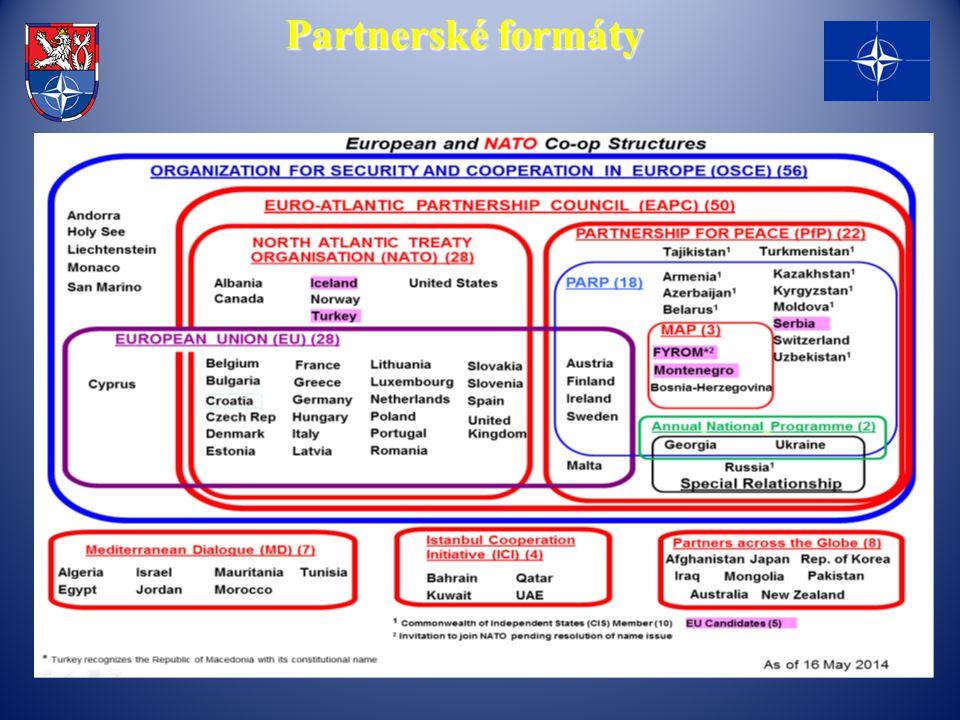 Partnerské formáty
