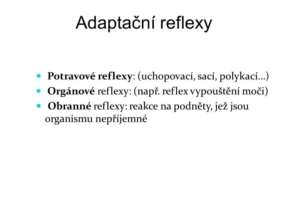 Adaptační reflexy Potravové reflexy: (uchopovací, sací, polykací…) Orgánové reflexy: (např. reflex vypouštění moči) Obranné reflexy: reakce na podněty