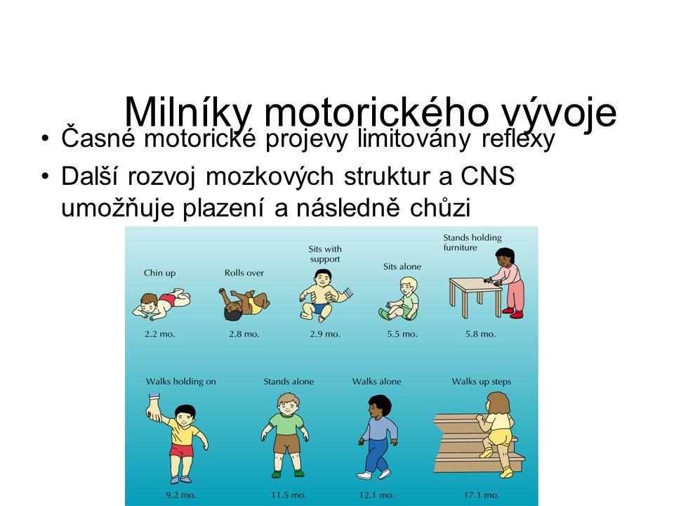 Milníky motorického vývoje Časné motorické projevy limitovány reflexy Další rozvoj mozkových struktur a CNS umožňuje plazení a následně chůzi