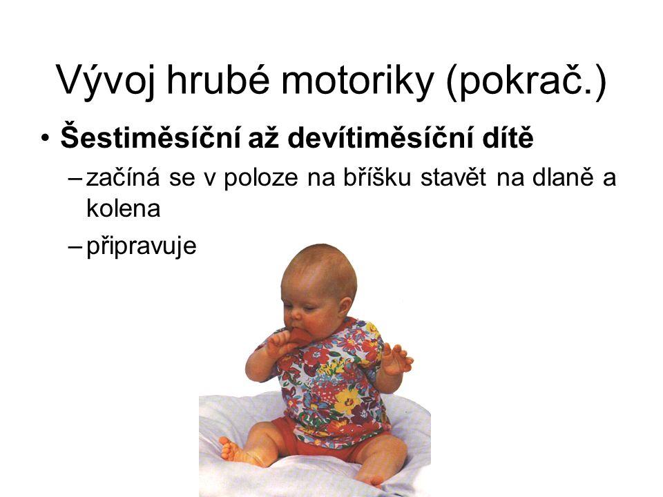 Vývoj hrubé motoriky (pokrač.) Šestiměsíční až devítiměsíční dítě –začíná se v poloze na bříšku stavět na dlaně a kolena –připravuje se k lezení
