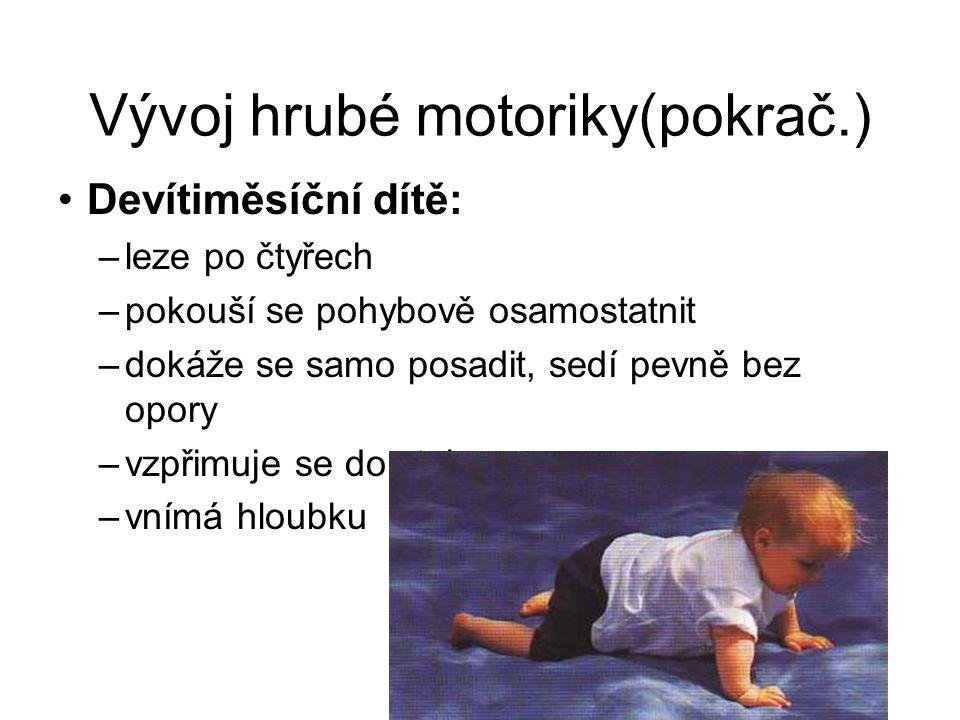 Vývoj hrubé motoriky(pokrač.) Devítiměsíční dítě: –leze po čtyřech –pokouší se pohybově osamostatnit –dokáže se samo posadit, sedí pevně bez opory –vz