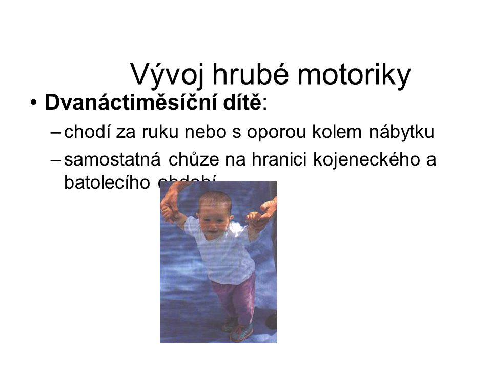 Vývoj hrubé motoriky Dvanáctiměsíční dítě: –chodí za ruku nebo s oporou kolem nábytku –samostatná chůze na hranici kojeneckého a batolecího období