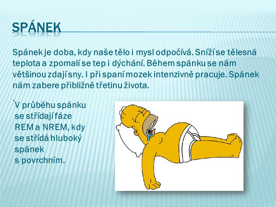 Spánek je doba, kdy naše tělo i mysl odpočívá.Sníží se tělesná teplota a zpomalí se tep i dýchání.