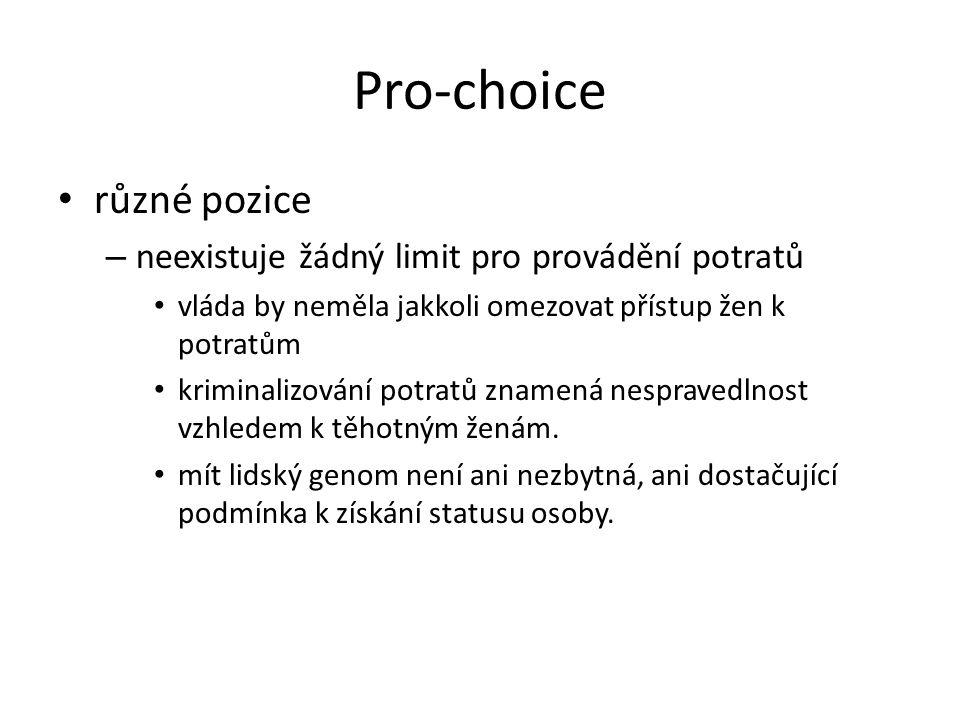 Pro-choice různé pozice – neexistuje žádný limit pro provádění potratů vláda by neměla jakkoli omezovat přístup žen k potratům kriminalizování potratů