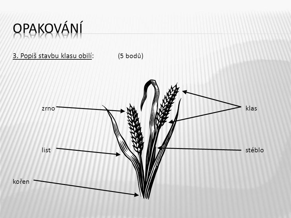 3. Popiš stavbu klasu obilí: (5 bodů) zrnoklas liststéblo kořen 5