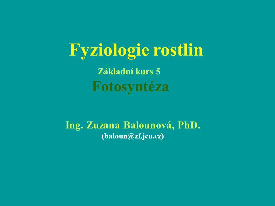 Fyziologie rostlin Ing. Zuzana Balounová, PhD. (baloun@zf.jcu.cz) Základní kurs 5 Fotosyntéza