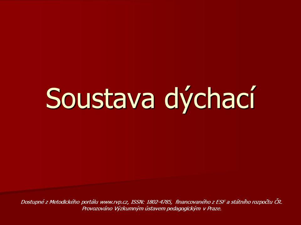 Soustava dýchací Dostupné z Metodického portálu www.rvp.cz, ISSN: 1802-4785, financovaného z ESF a státního rozpočtu ČR. Provozováno Výzkumným ústavem
