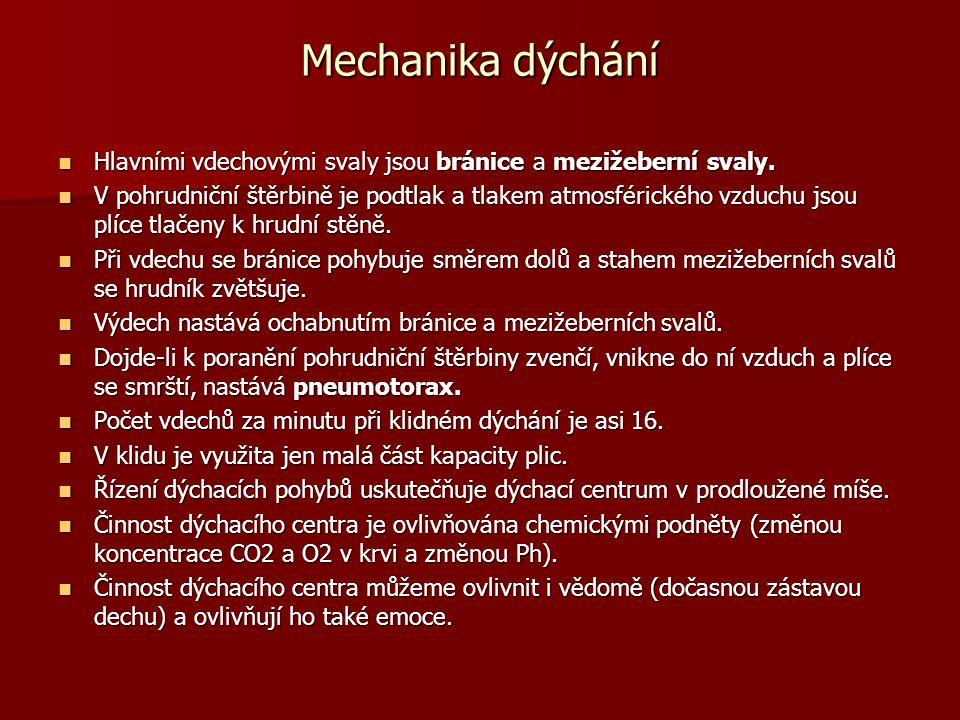 Mechanika dýchání Hlavními vdechovými svaly jsou bránice a mezižeberní svaly. Hlavními vdechovými svaly jsou bránice a mezižeberní svaly. V pohrudničn
