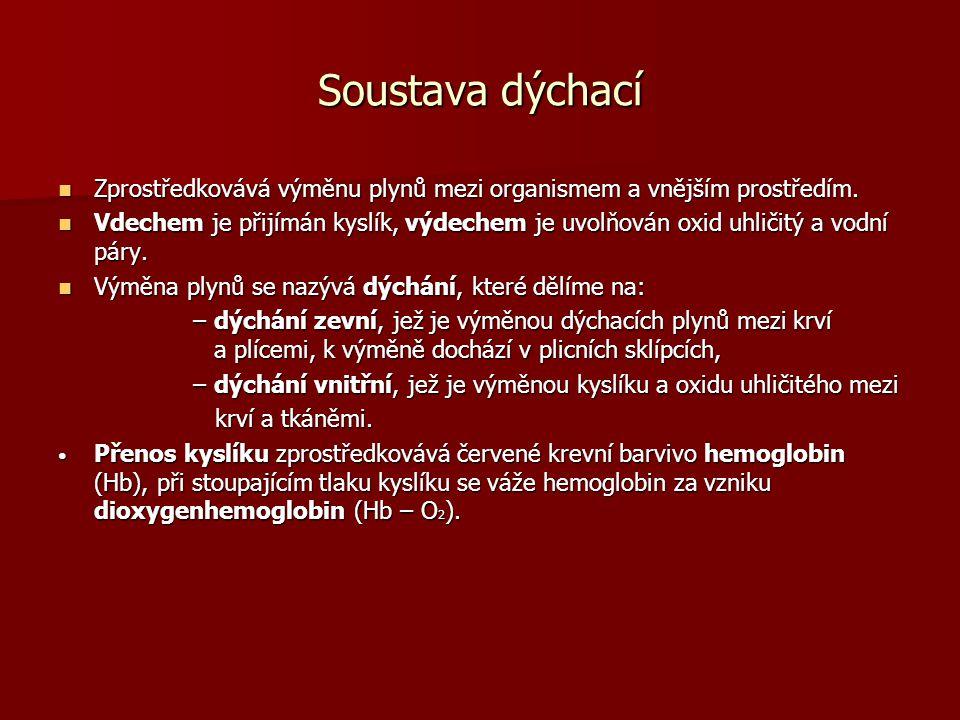 Literatura: JELÍNEK, J.; ZICHÁČEK, V.: Biologie pro střední školy gymnazijního typu.