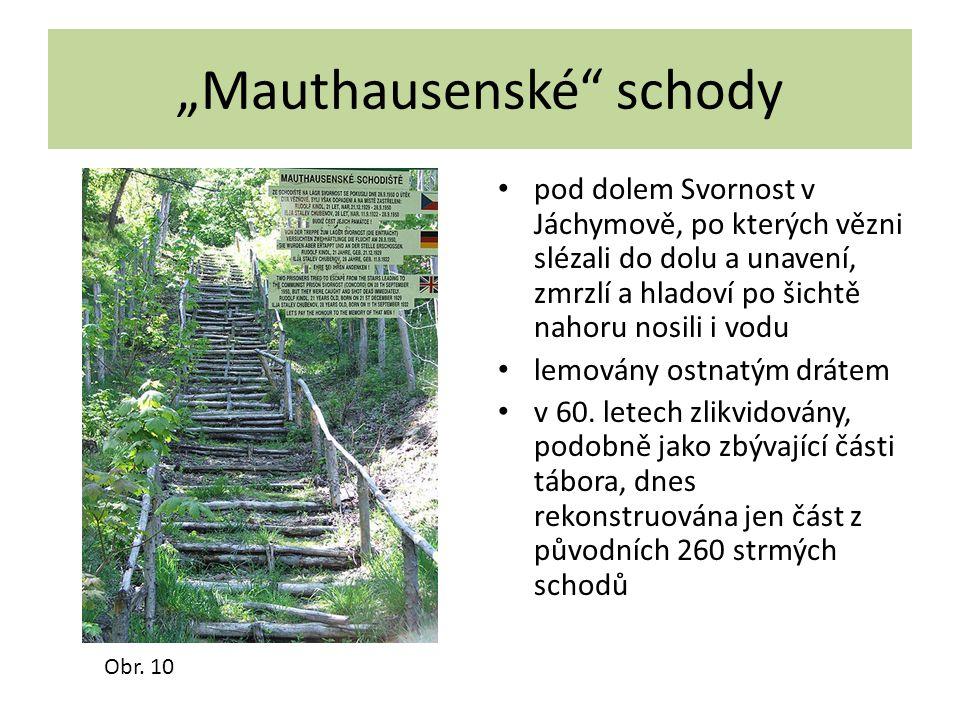 """""""Mauthausenské"""" schody pod dolem Svornost v Jáchymově, po kterých vězni slézali do dolu a unavení, zmrzlí a hladoví po šichtě nahoru nosili i vodu lem"""