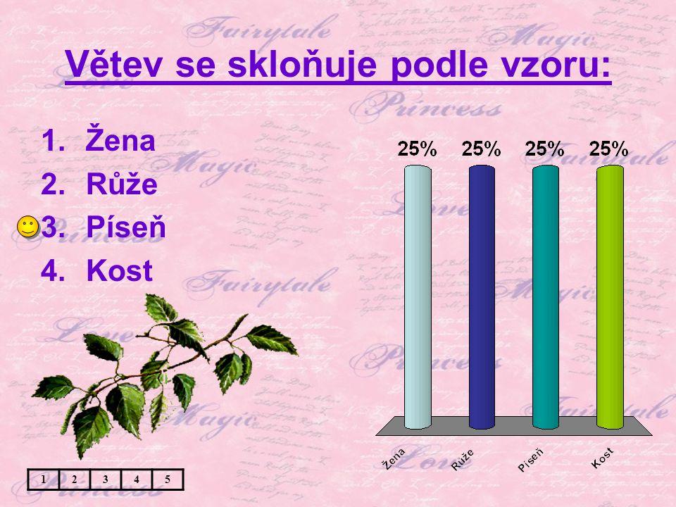 Větev se skloňuje podle vzoru: 1.Žena 2.Růže 3.Píseň 4.Kost 12345
