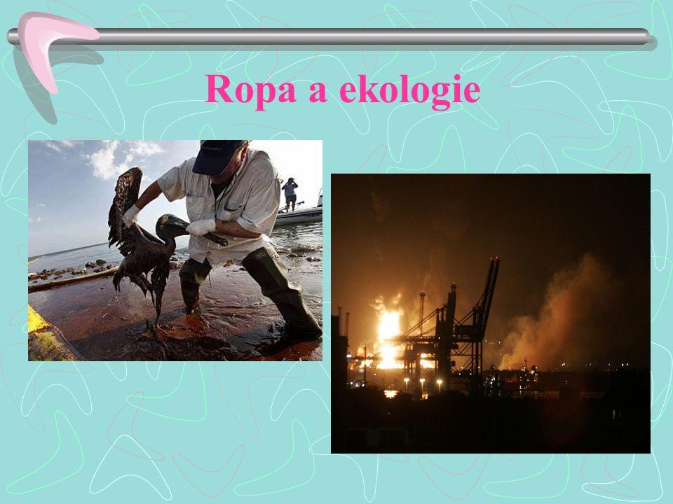 Úlohy Zhodnoť využití ropy a ropných produktů v životě člověka. Čím lze ropu nahradit?