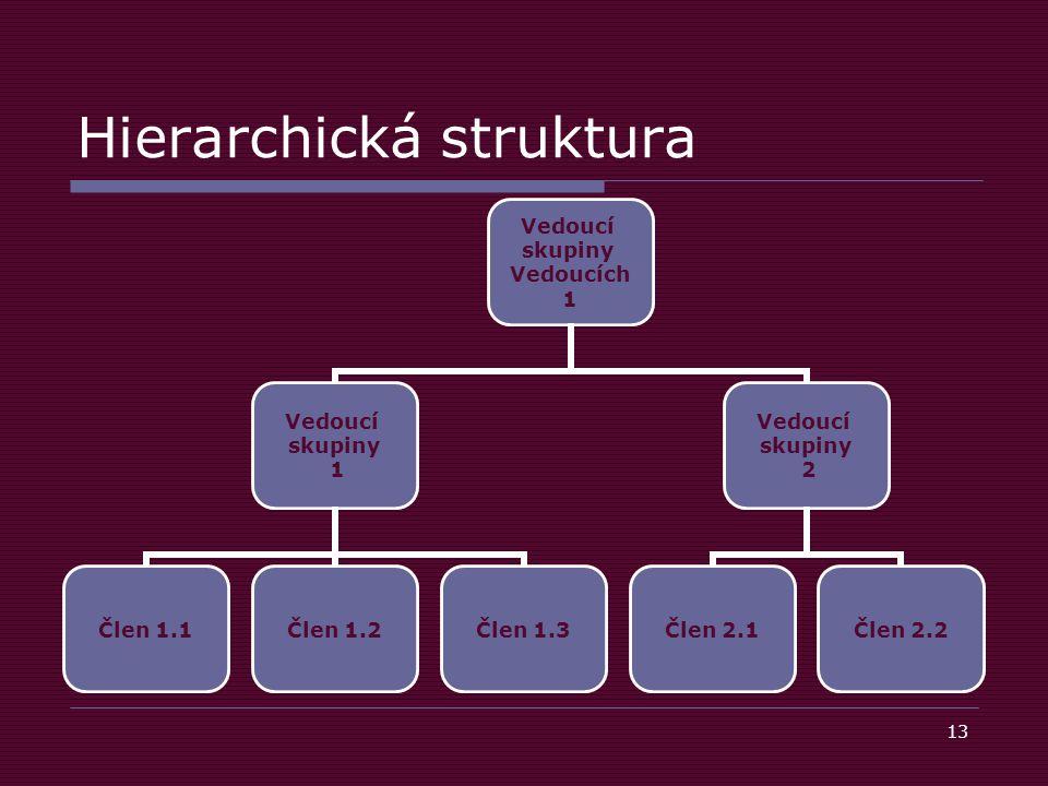 13 Hierarchická struktura Vedoucí skupiny Vedoucích 1 Vedoucí skupiny 1 Člen 1.1Člen 1.2Člen 1.3 Vedoucí skupiny 2 Člen 2.1Člen 2.2