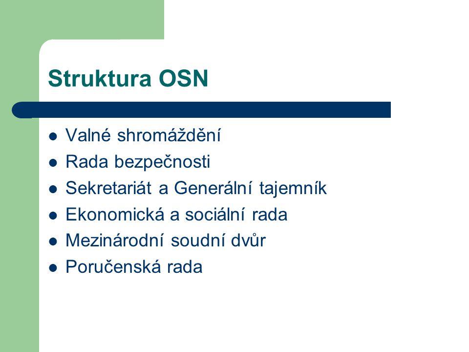 Struktura OSN Valné shromáždění Rada bezpečnosti Sekretariát a Generální tajemník Ekonomická a sociální rada Mezinárodní soudní dvůr Poručenská rada
