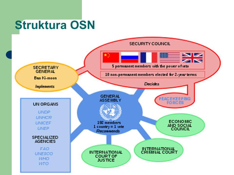 Struktura OSN