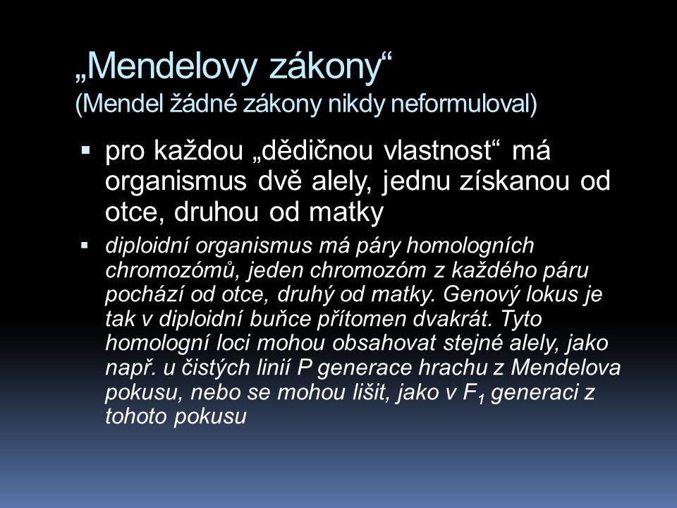 """""""Mendelovy zákony"""" (Mendel žádné zákony nikdy neformuloval)  pro každou """"dědičnou vlastnost"""" má organismus dvě alely, jednu získanou od otce, druhou"""