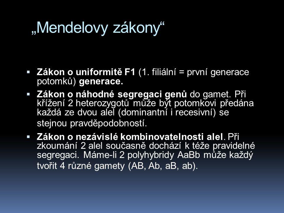 """""""Mendelovy zákony""""  Zákon o uniformitě F1 (1. filiální = první generace potomků) generace.  Zákon o náhodné segregaci genů do gamet. Při křížení 2 h"""