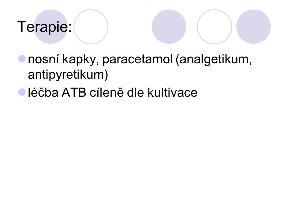 Terapie: nosní kapky, paracetamol (analgetikum, antipyretikum) léčba ATB cíleně dle kultivace