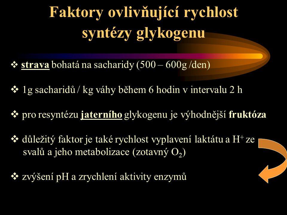 Faktory ovlivňující rychlost syntézy glykogenu  strava bohatá na sacharidy (500 – 600g /den)  1g sacharidů / kg váhy během 6 hodin v intervalu 2 h 