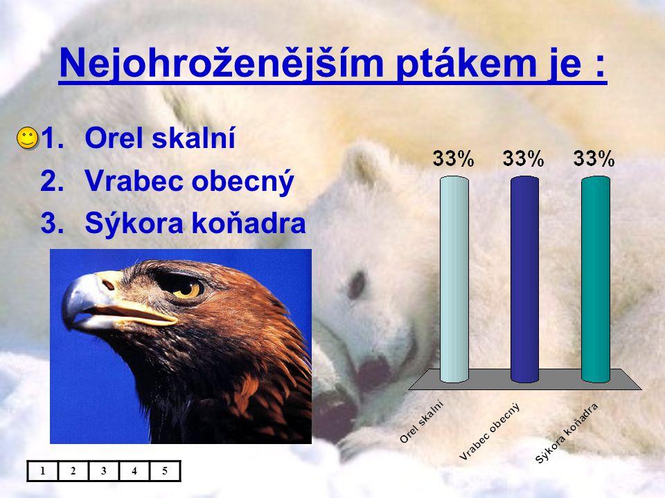 Nejohroženějším ptákem je : 1.Orel skalní 2.Vrabec obecný 3.Sýkora koňadra 12345