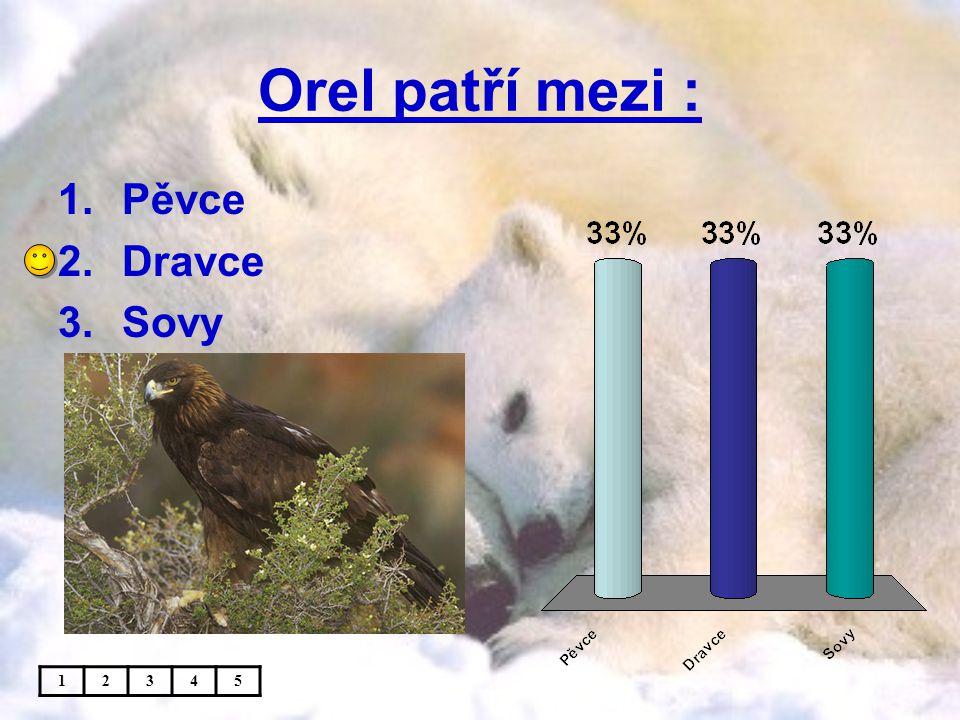 Orel patří mezi : 1.Pěvce 2.Dravce 3.Sovy 12345