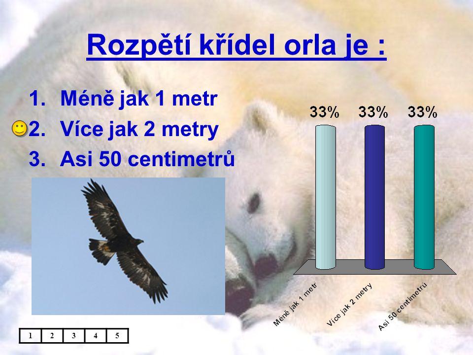 Rozpětí křídel orla je : 1.Méně jak 1 metr 2.Více jak 2 metry 3.Asi 50 centimetrů 12345