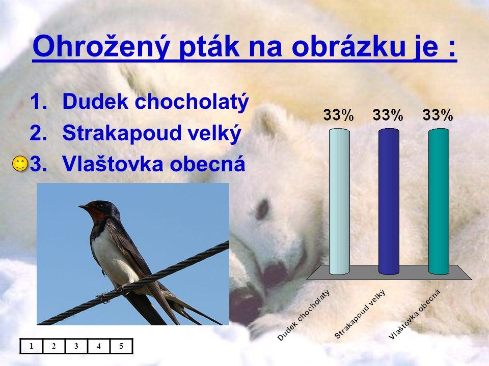 Ohrožený pták na obrázku je : 1.Dudek chocholatý 2.Strakapoud velký 3.Vlaštovka obecná 12345