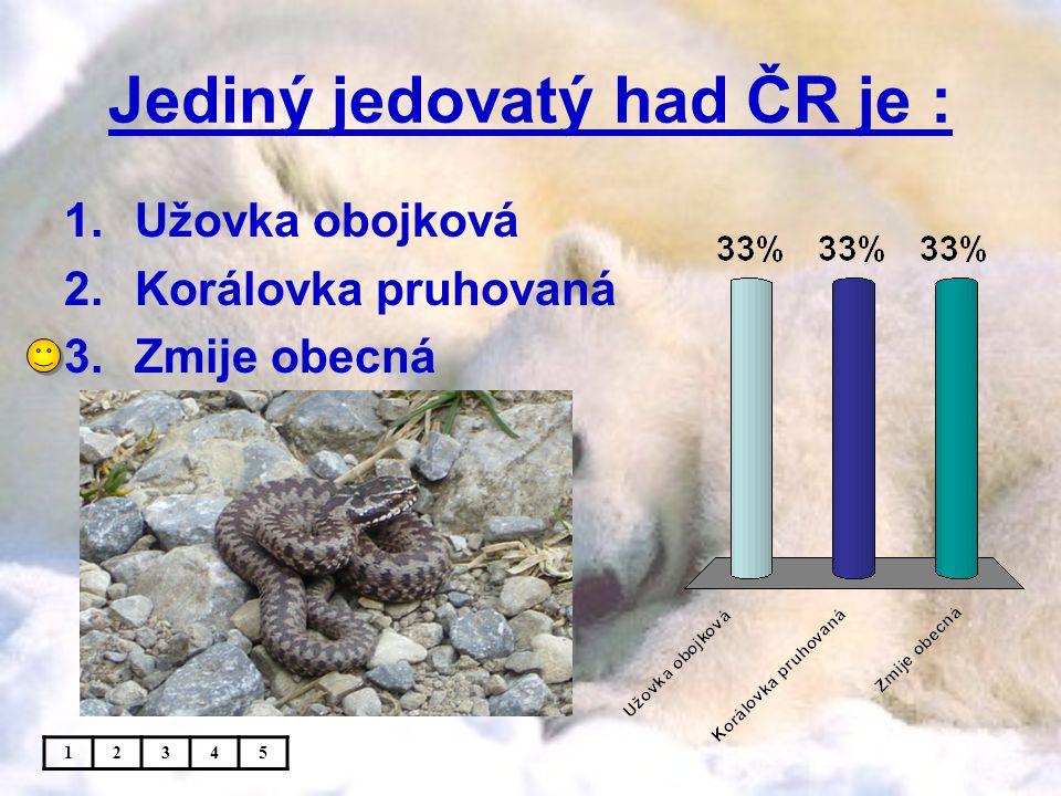 Jediný jedovatý had ČR je : 1.Užovka obojková 2.Korálovka pruhovaná 3.Zmije obecná 12345