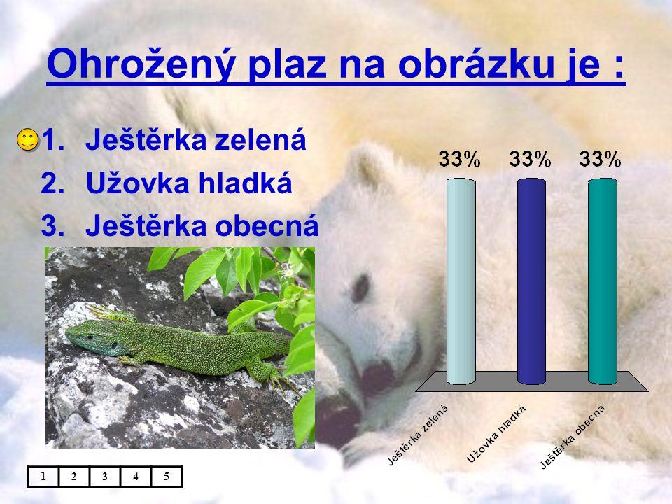 Ohrožený plaz na obrázku je : 1.Ještěrka zelená 2.Užovka hladká 3.Ještěrka obecná 12345