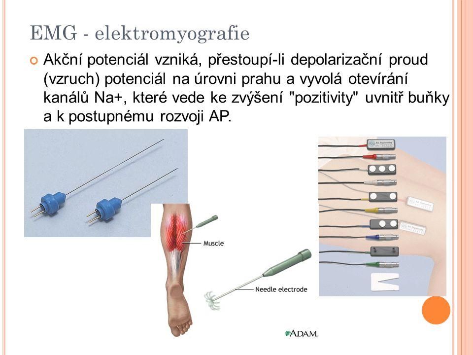 EMG - elektromyografie Akční potenciál vzniká, přestoupí-li depolarizační proud (vzruch) potenciál na úrovni prahu a vyvolá otevírání kanálů Na+, které vede ke zvýšení pozitivity uvnitř buňky a k postupnému rozvoji AP.
