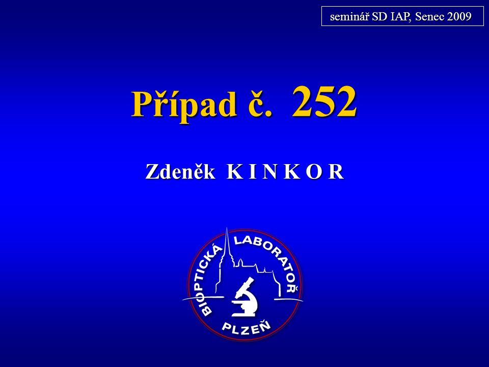 Případ č. 252 Zdeněk K I N K O R seminář SD IAP, Senec 2009
